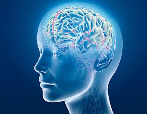 Mjesta za pronalaženje ozljeda mozga